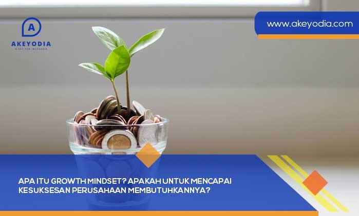 Apa itu Growth Mindset? Apakah untuk Mencapai Kesuksesan Perusahaan Membutuhkannya?