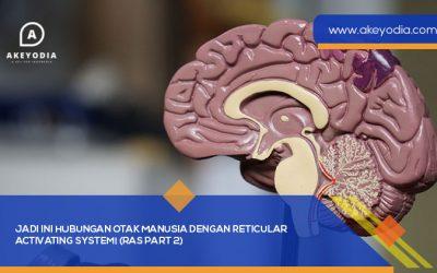 Jadi ini Hubungan Otak Manusia dengan Reticular Activating System! (RAS Part 2)